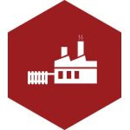 Aleksandro Stulginskio universitetas (ASU)
