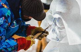Kelionę į Jelgavos ledo skulptūrų festivalį apkartino ją organizavusios įmonės darbas