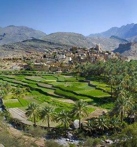 Omanas. Svečiuose pas žiląjį sultoną (2)