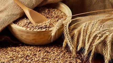 FAO: 2016 metais dėl pigusių grūdų, mėsos ir pieno sumažėjo maisto kainos