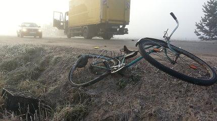 Žuvo iš šalutinės gatvės į kelią Marijampolė–Kybartai išvažiavęs dviratininkas