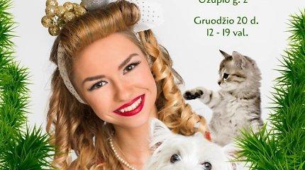 Beglobių gyvūnų mugė Vilniuje kviečia prisidėti prie Kalėdinio stebuklo