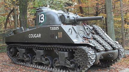 Išpardavimas Prancūzijos muziejuje: galite įsigyti Antrojo pasaulinio karo laikų tanką