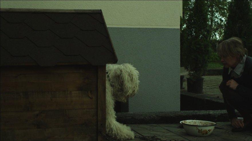 """Kadras iš filmo \""""Šuns dienos\"""""""