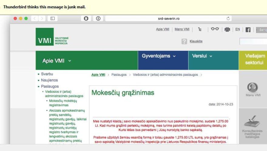 Netikro VMI puslapio vaizdas