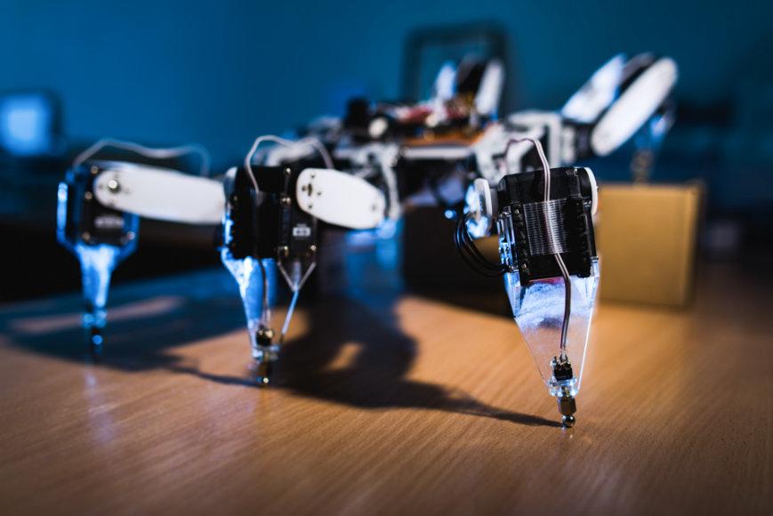 VGTU studentu sukurtas robotas voras