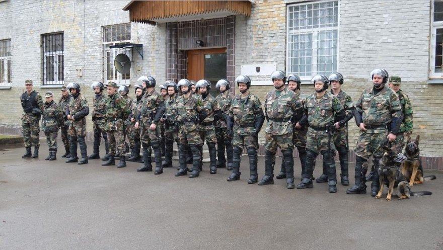 Tikrintojų pajėgos