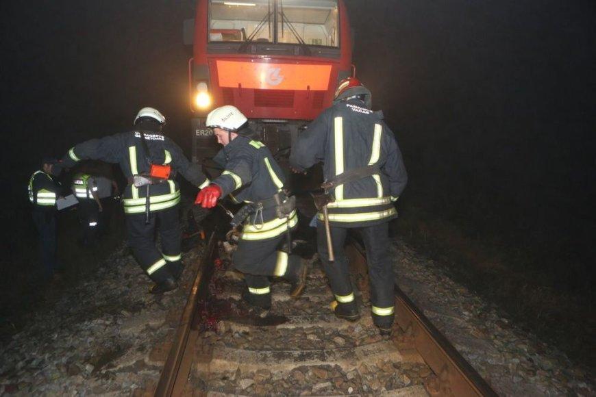 Šilutės raj. traukinys mirtinai sužalojo karvę