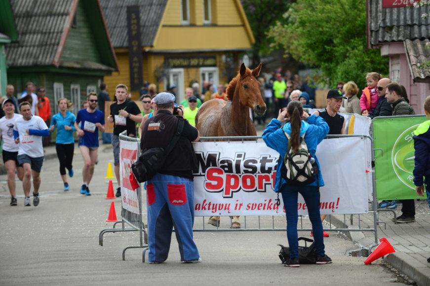 Trakų pusmaratonyje dalyvavo beveik 2000 bėgikų