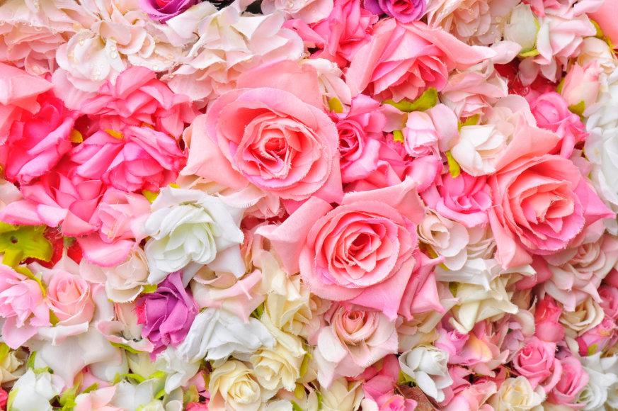 Gražios pastelinių spalvų gėlės