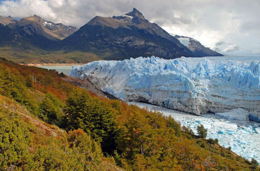 Argentina, ledynas Patagonijoje