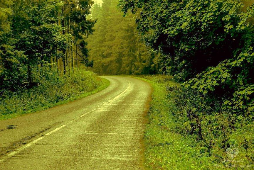 Rudeniškas kelias