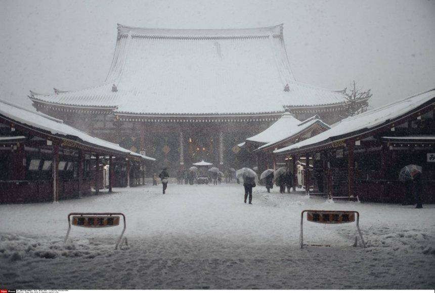 Pūga Tokijuje