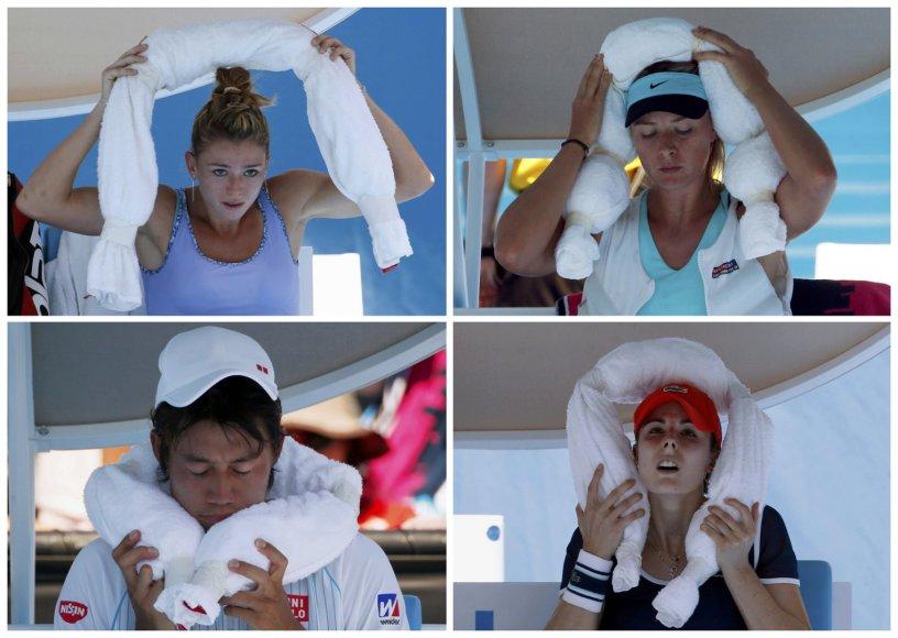 Australian Open varžybos
