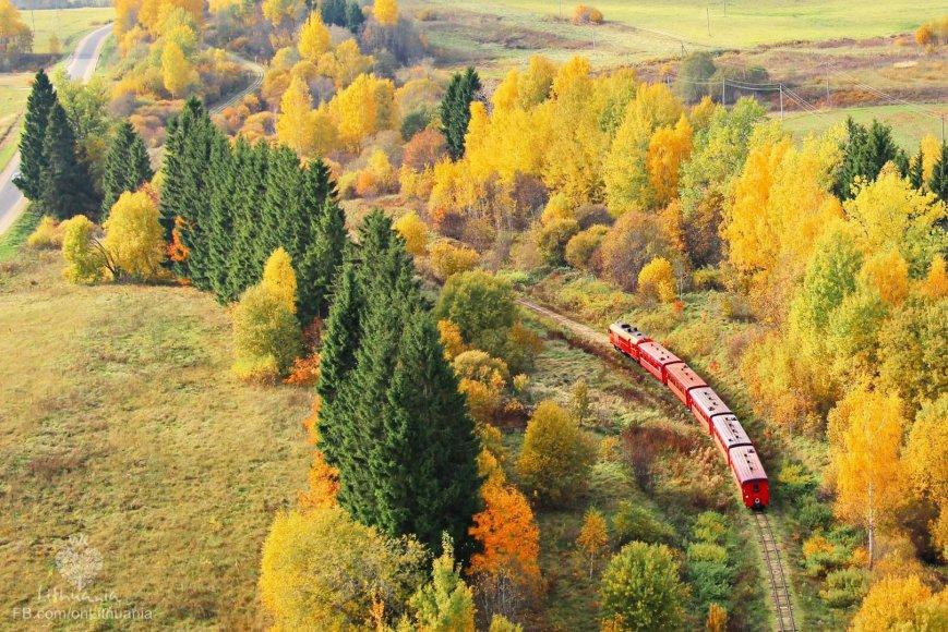 Rudens traukinys