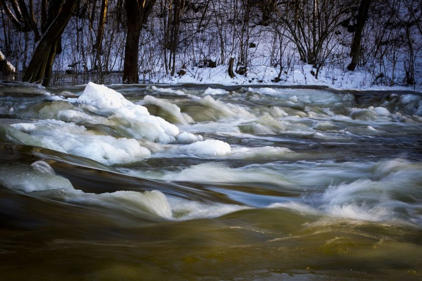 Spūstelėję šalčiai gramzdina gamtą į žiemos miegą.