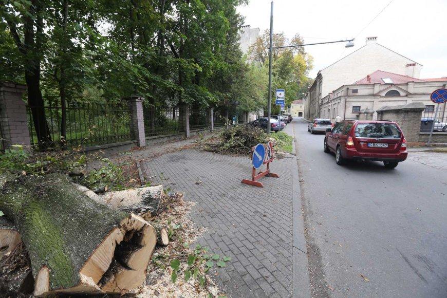 Vilniuje, Radvilų gatvėje nupjauti medžiai.