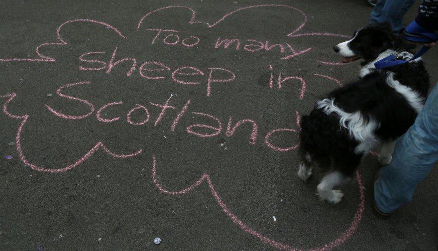 Škotija po referendumo