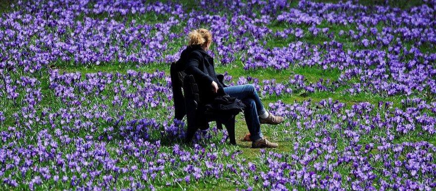 Pavasaris Vokietijoje