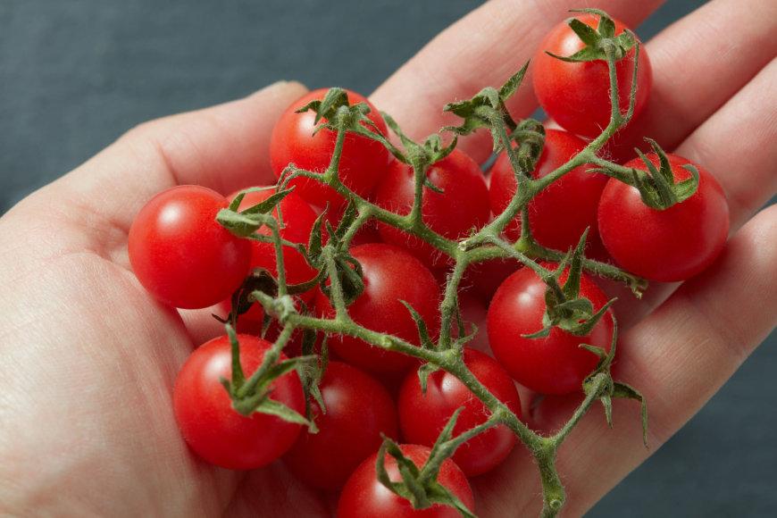 Fotolia nuotr./Vyšniniai pomidorai