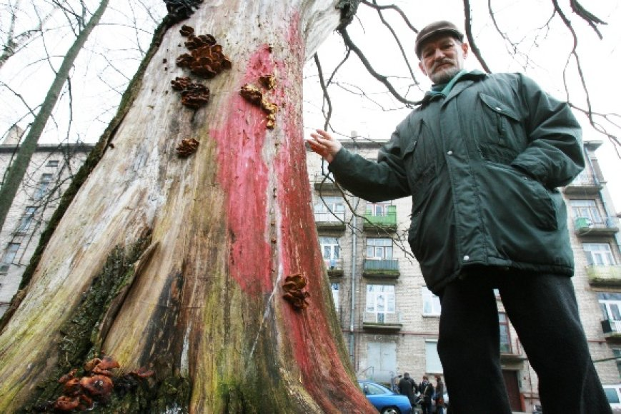 Danės gatvės gyventojas Henrikas Dulkė prie medžio