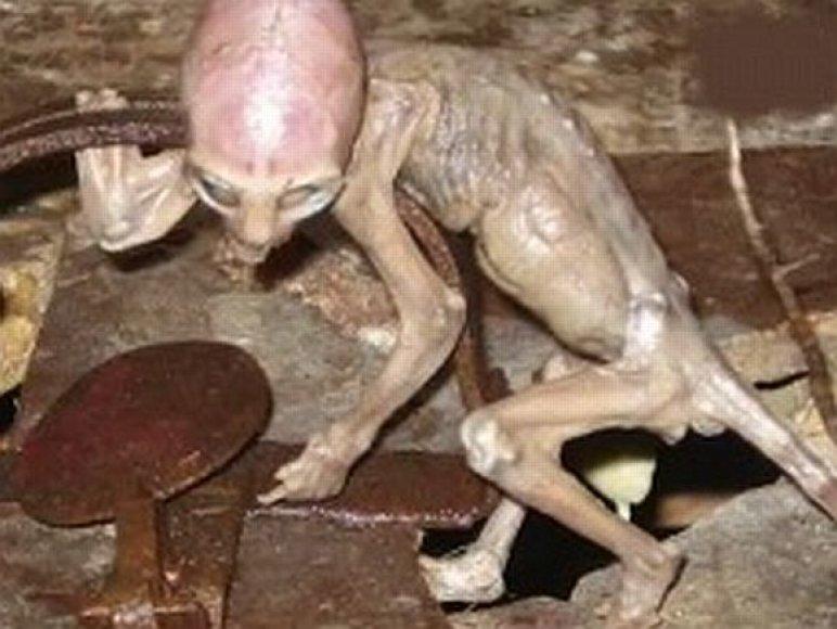 Ateivių kūdikis rastas Meksikoje