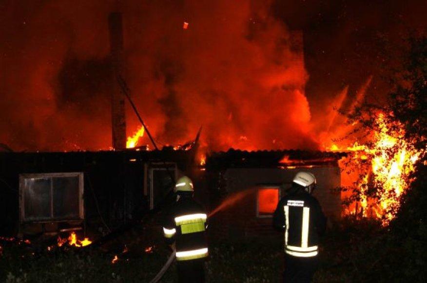 Žaibas Aleknų kaime uždegė namą