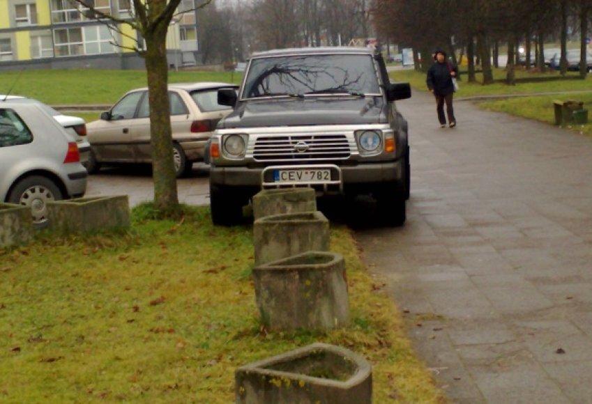 Fotopolicija: automobilių statymas prie baseino Vilniuje.