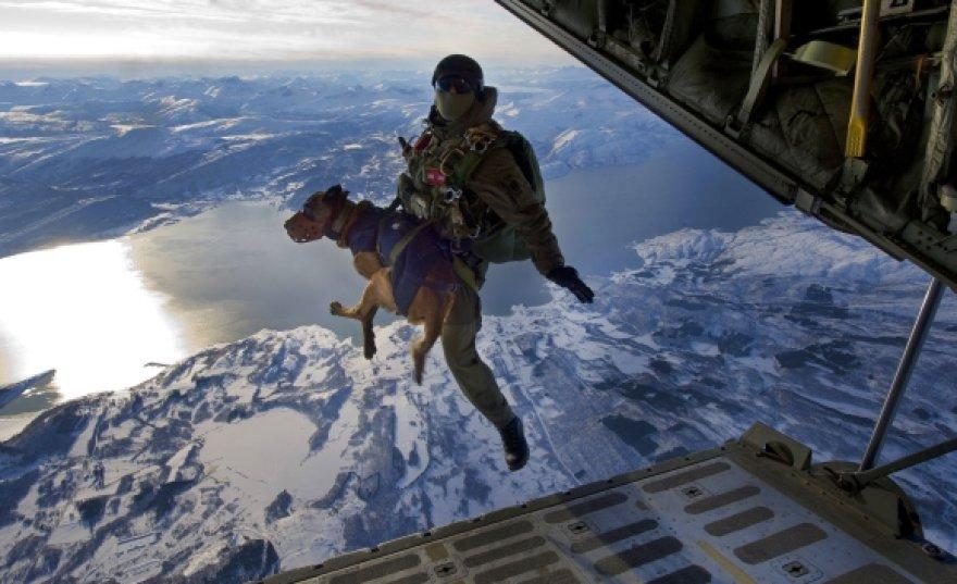"""Austrijos kario ir jo šuns šuolis Norvegijoje, per pratybas """"Cold Response"""" (2010 m.)"""