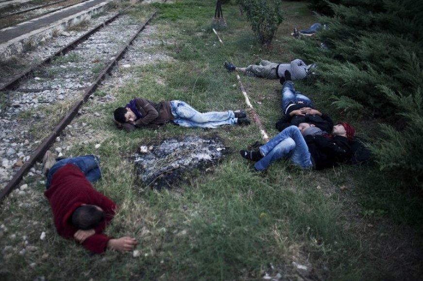 Nelegalūs migrantai miega ant žemės perėję Turkijos ir Graikijos sieną.