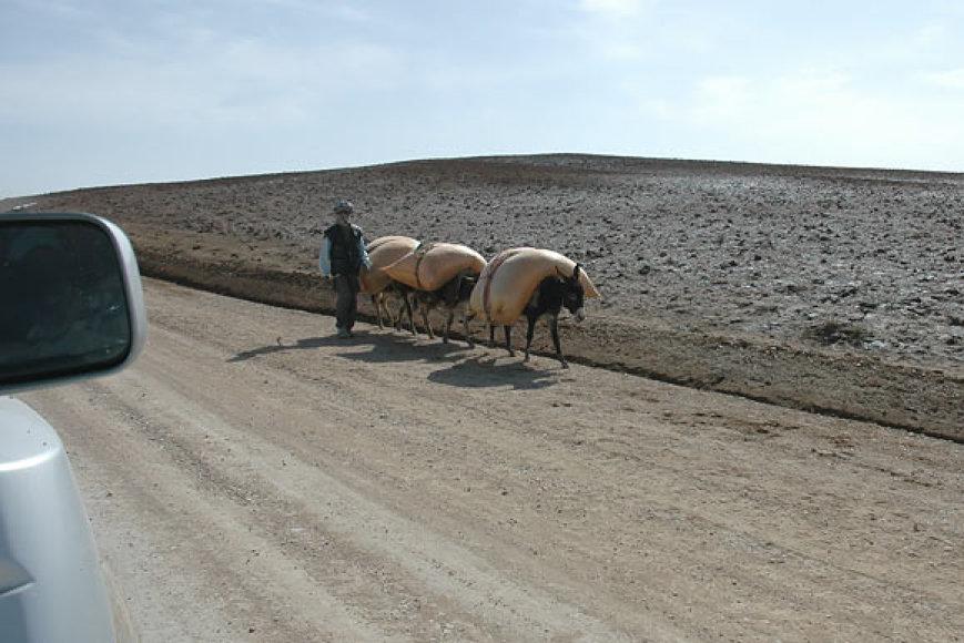 Kelias Kabulas-Čagčaranas-Heratas (archyvo nuotr.)