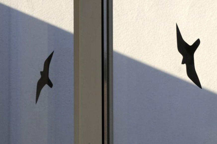 Paukščių siluetais ant langų ir inkilais MRU pasitinka Žemės dieną.