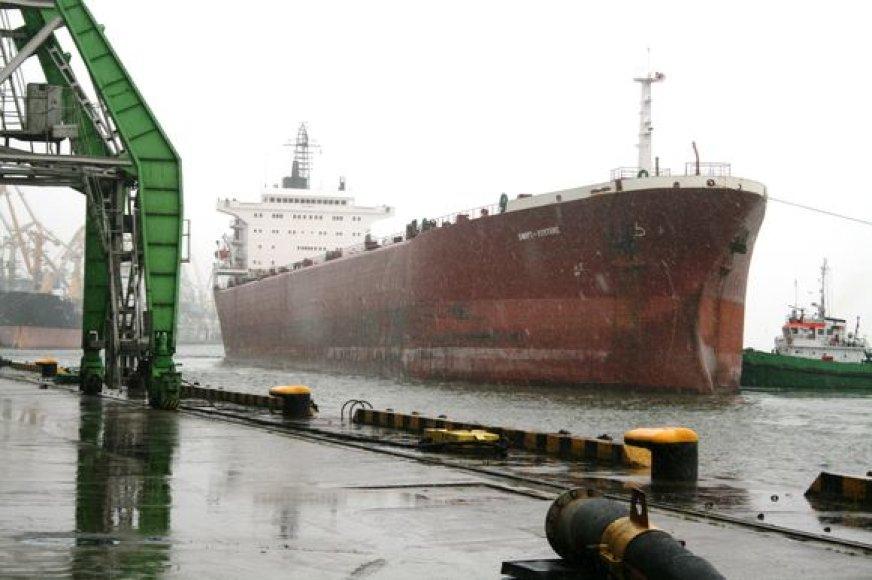 """32 metrų pločio ir 242 metrų ilgio laivas """"Swift-Fortune""""yra ilgiausias laivas, pakrautas prie KLASCO krantinių."""