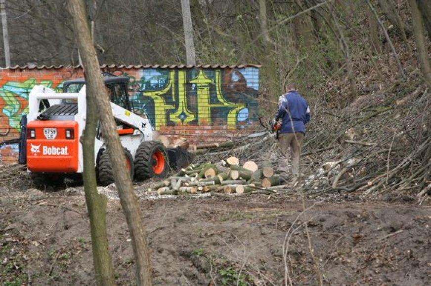Specialistai užtikrino, kad Vilnios pakrantėje kertami tik menkaverčiai medžiai. Ketinama išvalyti visą upelio pakrantę Sereikiškių parke.