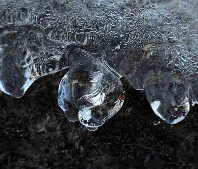 Natūralios ledo skulptūros...