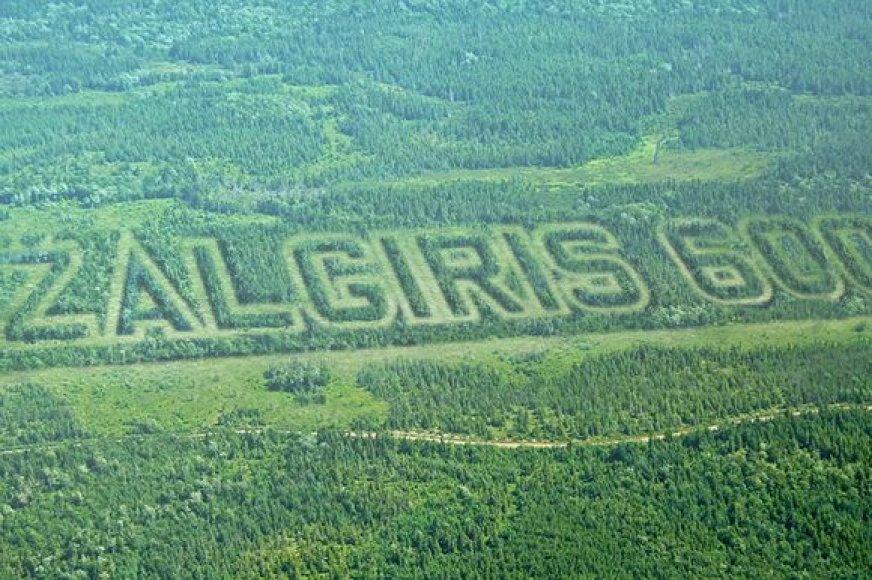 """Nemenčinės miškuose – rekordinio dydžio užrašas: """"Žalgiris 600"""""""