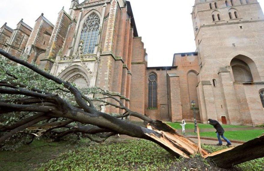 Vėtros Prancūzijoje pridarė žalos: išvartė medžius, paliko žmones be elektros.