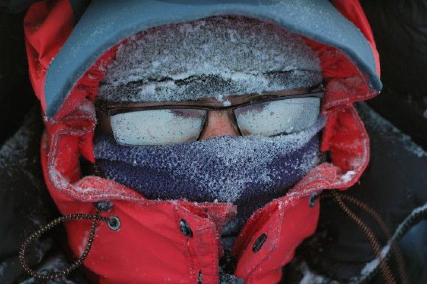 Poliarinis šaltis