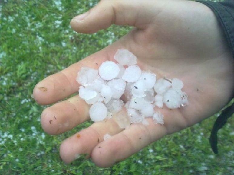 Ledai gegužės 19 d. šiaurės Lietuvoje