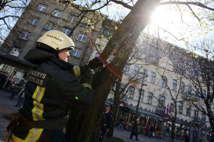 vykio vietoje plušėję ugniagesiai tvirtino, jog panašių iškvietimų, ypač šiltuoju metų laikotarpiu, sulaukia gana dažnai.