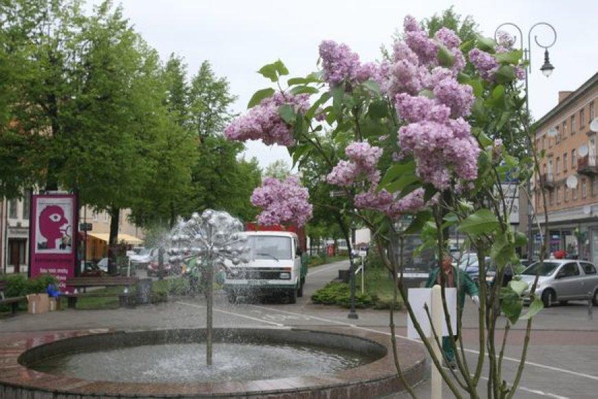 Visą vasarą veiks tik 4 iš 10 miesto fontanų.