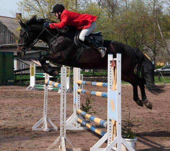 Raudondvaryje varžysis ne tik profesionalai, bet ir jauniai, mėgėjai ir poni klasės žirgai