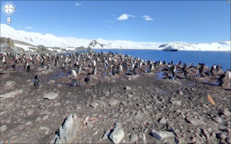 """""""Google Street View"""" Antarktidoje."""
