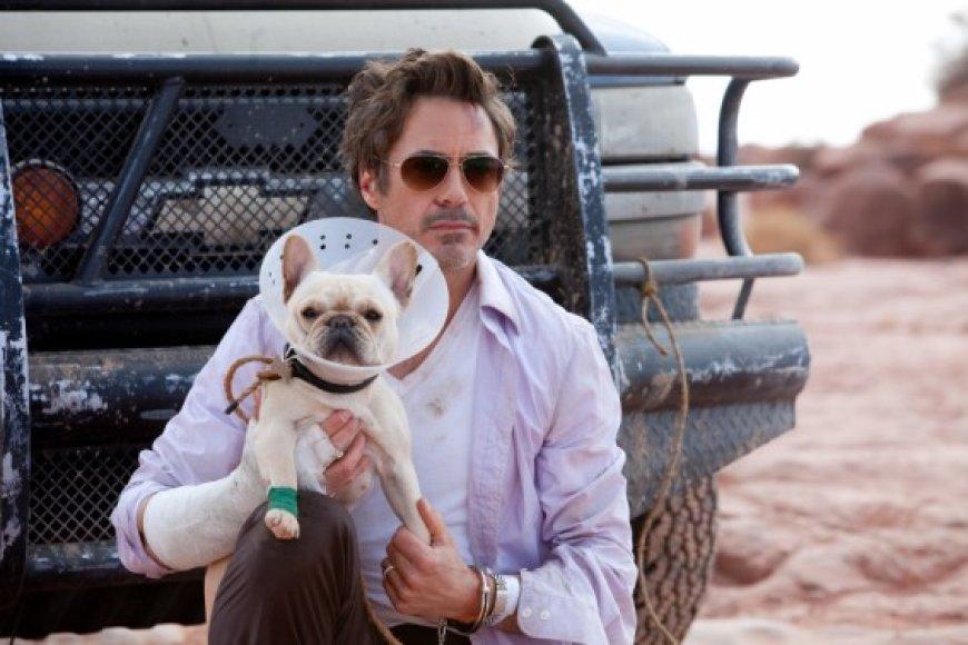"""Komedijoje """"Vingiuotas kelias namo"""" vieną pagrindinių vaidmenų sukūrė R.Downey jaunesnysis"""