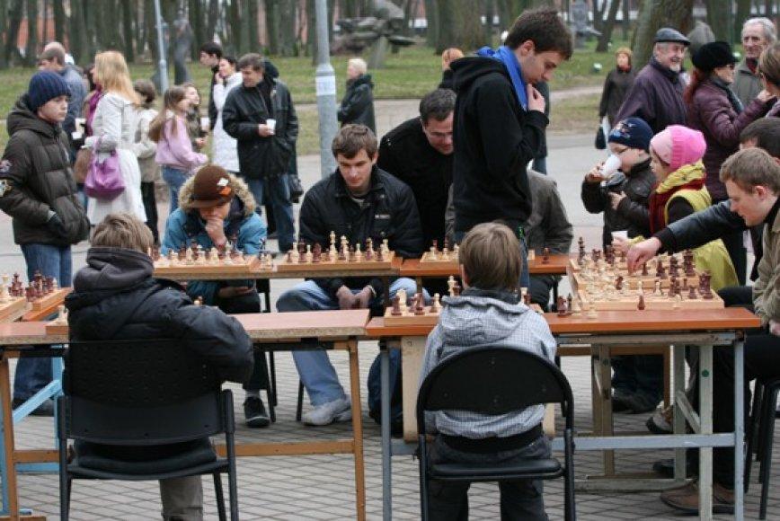 Skulptūrų parke varžėsi šachmatininkai, mankštinosi sporto aistruoliai, linksmino klounai, buvo vaišinamasi karšta arbata.