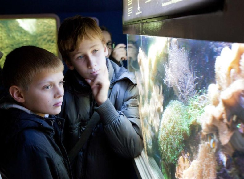 Jūrų muziejus vaišins lankytojus nekomama kava ir arbata.