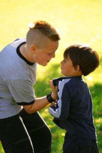 Šiuolaikinėje visuomenėje agresijos tarp vaikų nestinga.