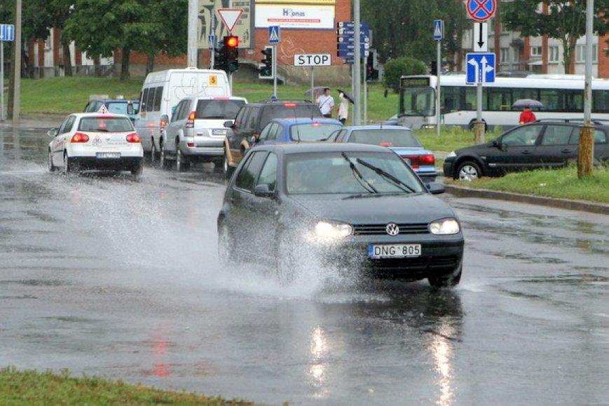 Liūtis Vilniuje