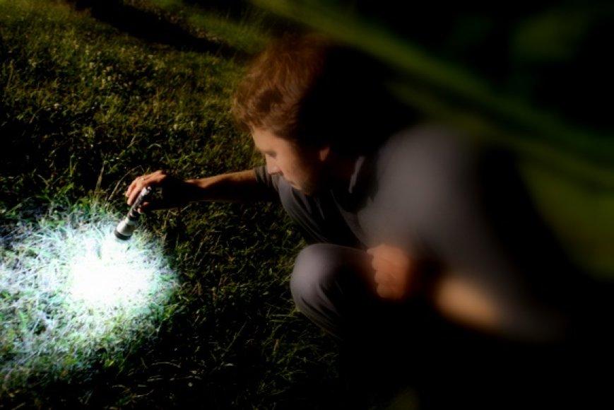 Joninių naktį – trumpiausią tarp visų naktų – miško glūdumoje ieškojome pražystančio paparčio žiedo.