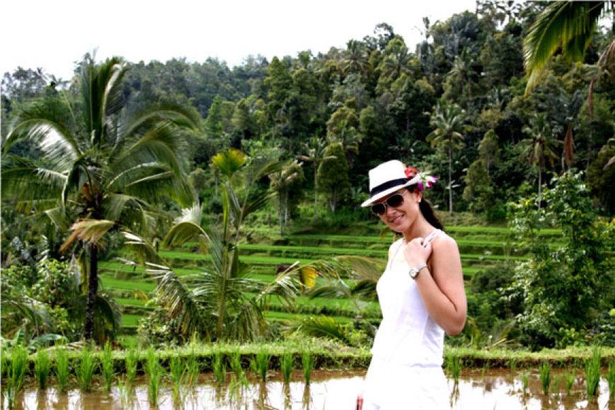 Agnė Zacharevičienė Bali ryžių laukuose